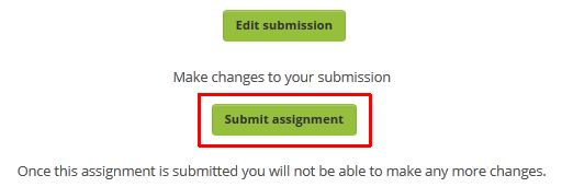 Click the submit assignment button near the bottom of the main assignment page