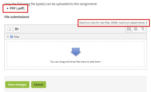 File submissions area with the maximum file size and maximum allowed files displayed