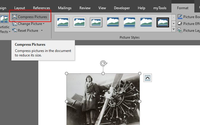 Compress Pictures option