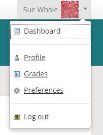 Profile menu