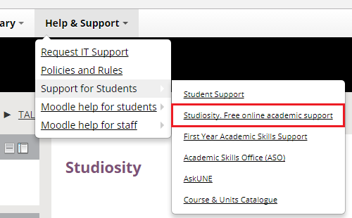 Support for students - studiosity link